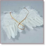 7718B - Accessories : Fairy feather wings