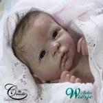 AW380017 - Dollkit 19 - Chloe