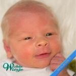 306710 - Dollkit 18  - Joseph Awake