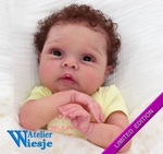 300338 - Dollkit 20 -  Miley - Limited Edition - € 99,90 - Pre Order
